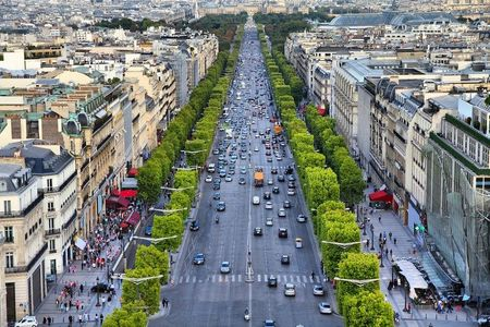Champs Elysees Avenue with green trees and surrounding buildings