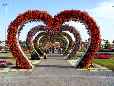 Miracle Garden, Dubai, United Arab Emirates