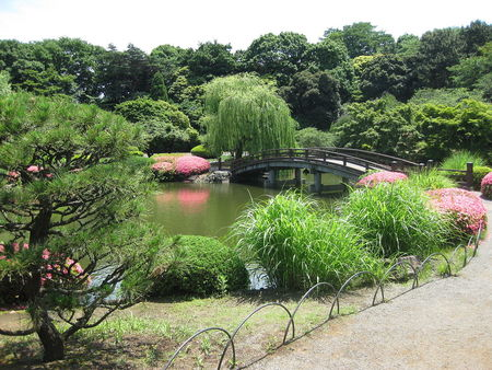Shinjuku Gyoen Little Bridge